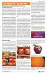 final art work september  az india news paper22