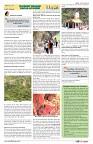 AZINDIA NEWS PAPER29