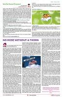 AZINIDA TIMES DECEMBER EDITION-PAGE22
