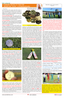 Page _ 24